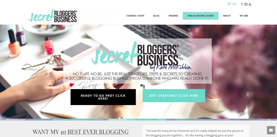 secret blogger business